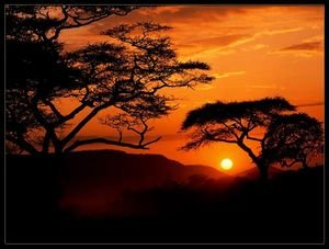 African-Sunset-1